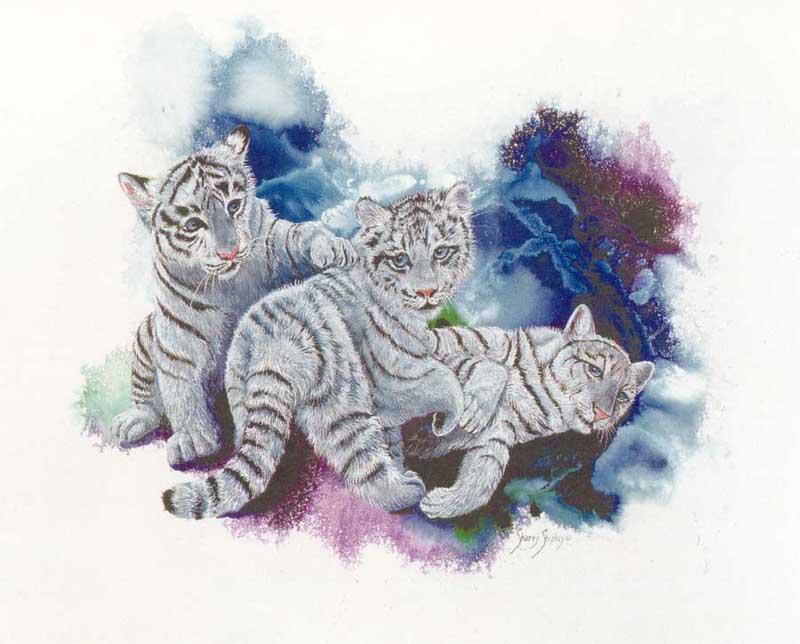Des beaux bebe tigres blancs - Bebe tigre mignon ...